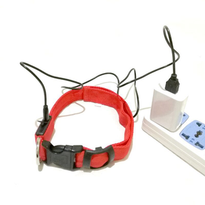 Pet accessories wholesale china high quality very bright led dog collar usb rechargeable