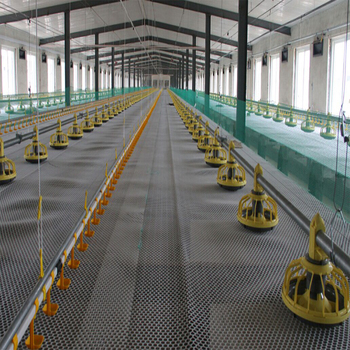 Farms Applicable Industries and Yellow Color chicken drinker and feeder equipment for broiler parent stock farm use