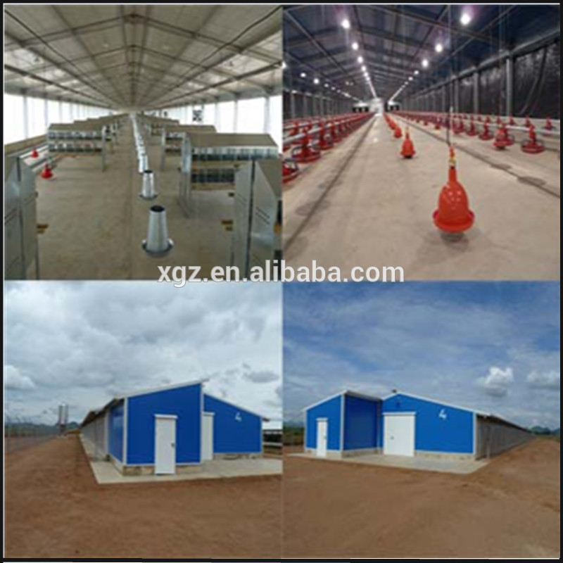 2016 China newest prefabricated chicken green house modern design with steel structure in low cost for sale
