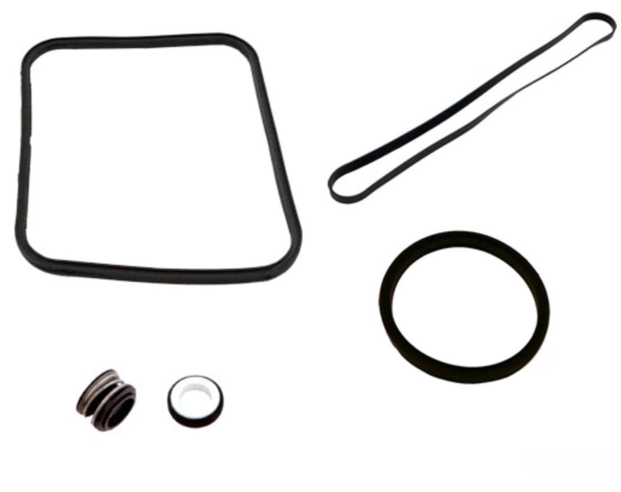 Banjo 13999 Pump Seal//O-Ring Kit
