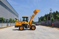(0.6t , 0.8t , 1t , 1.5t ,1.8t , 2t , 3 ton , 5t) New farm tractor loader 1.0t with good quality