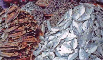 Dried Fish,Salted Fish From Bangladesh - Buy Dry Fish Product on Alibaba com