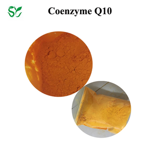 Food grade coenzyme q10 ubiquinone coq10 water soluble ubiquinol