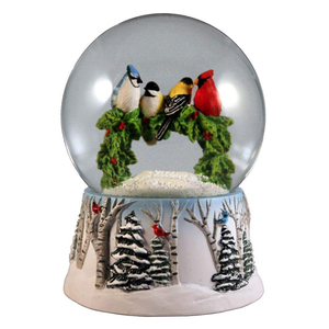 Custom Animal Bird Bird Eagle Snow Globe