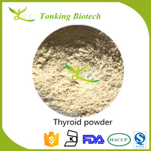 Tonking Supply High Quality Thyroid Powder