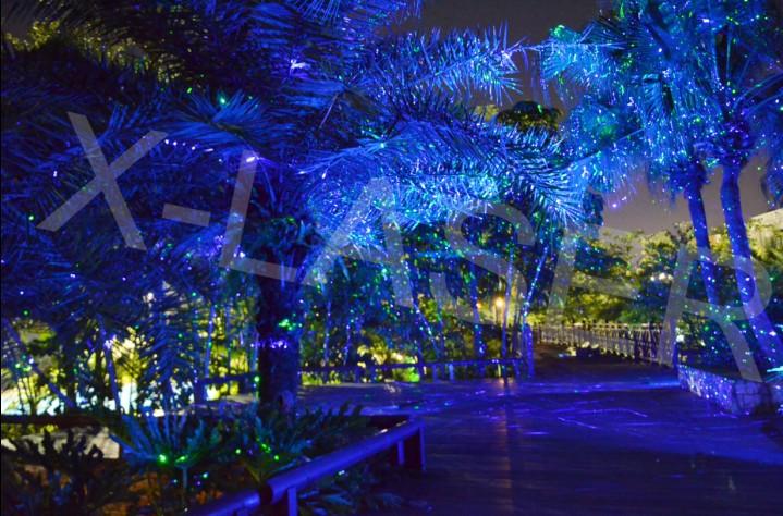 Outdoor Laser Lights For Trees,White Laser Christmas Lights,Large ...
