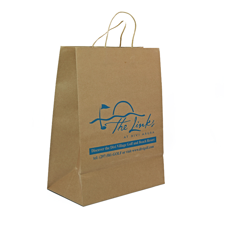 SLK-10 shopping packaging paper bag