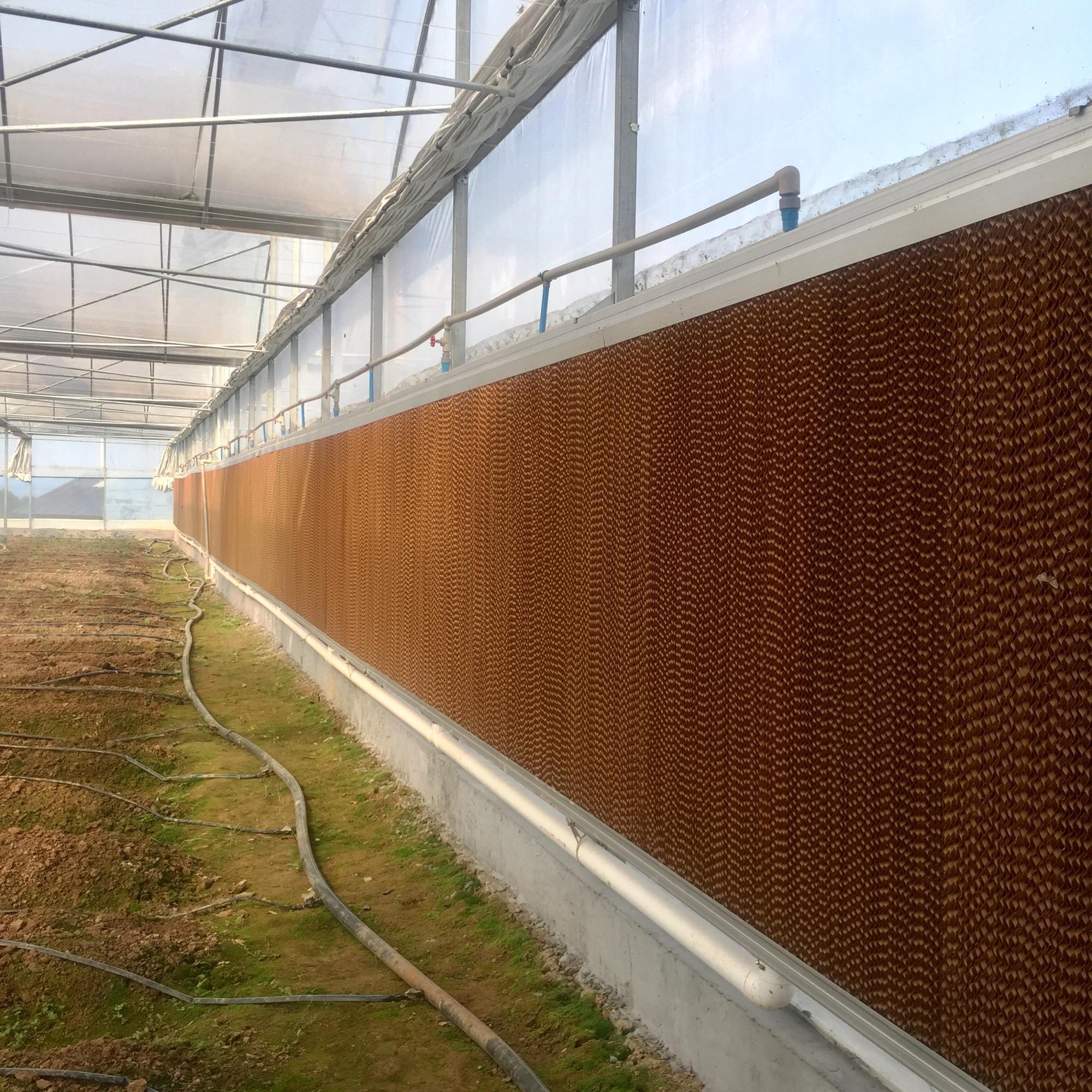 Fabrik Direkt Qualität Gewächshaus Rolling Bench Gewächshaus