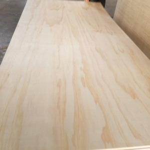 "1/2"" Radiata pine 12mm plywood Prefinished both sides PF2S"