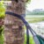 Customized Polyester Hammock Tree Straps for ENO hammock