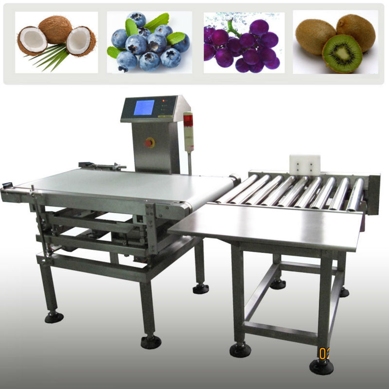 Automatic High Accuracy Conveyor Weight Check Weigher ...