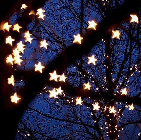 Ce & Rohs Approved Outdoor Christmas White 20led Snowflake Micro ...