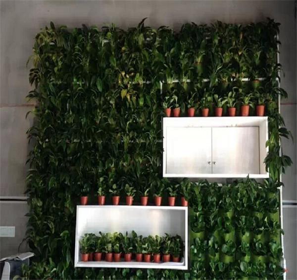 Vertical Wall Planter Part - 49: Flora Felt Living Wall Planter Vertical Garden/vertical Wall Garden Planter/vertical  Wall Planter