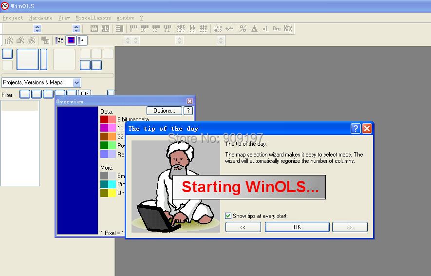 Winols 2.24 + damos надфили 7.4 ГБ бесплатная доставка по электронной почте