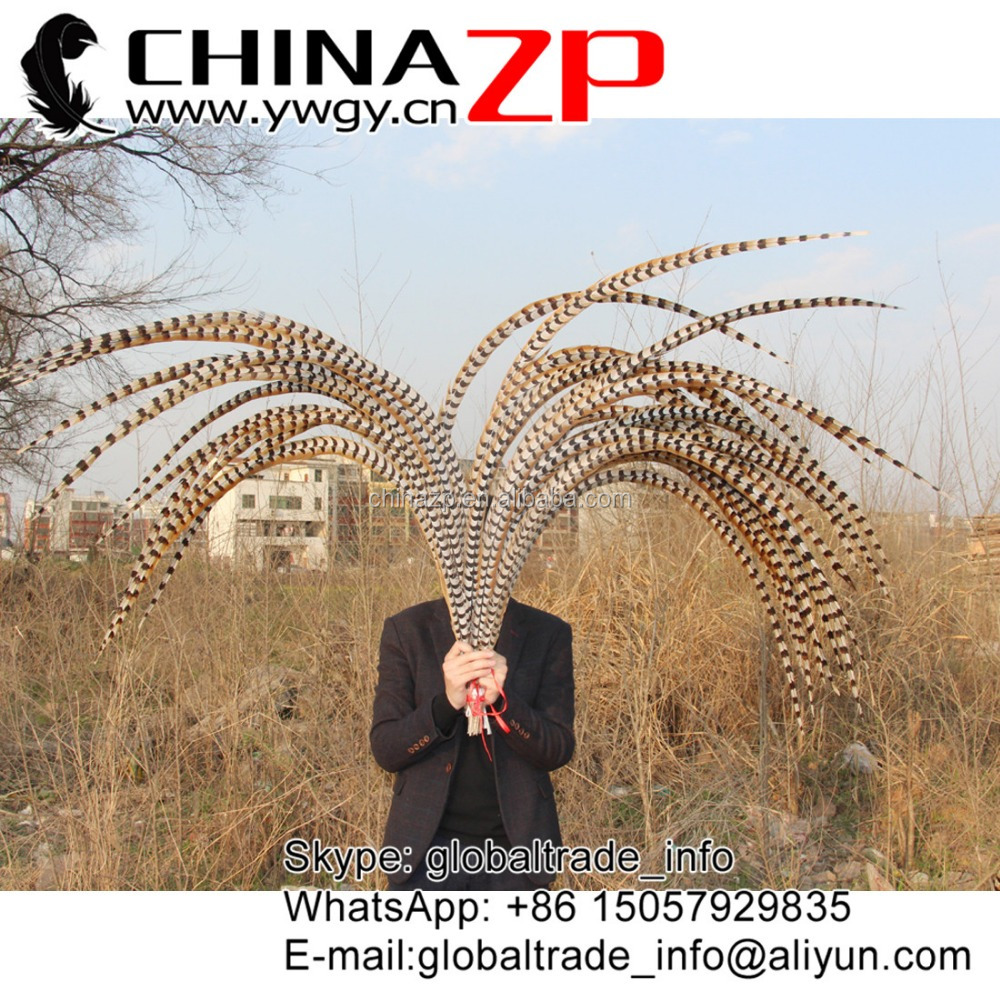 No.1 Supplier ZPDECOR Best Selling Cheap Large Natural 140-150cm Length Super Large Reeves Venery Pheasant Tail Feathers
