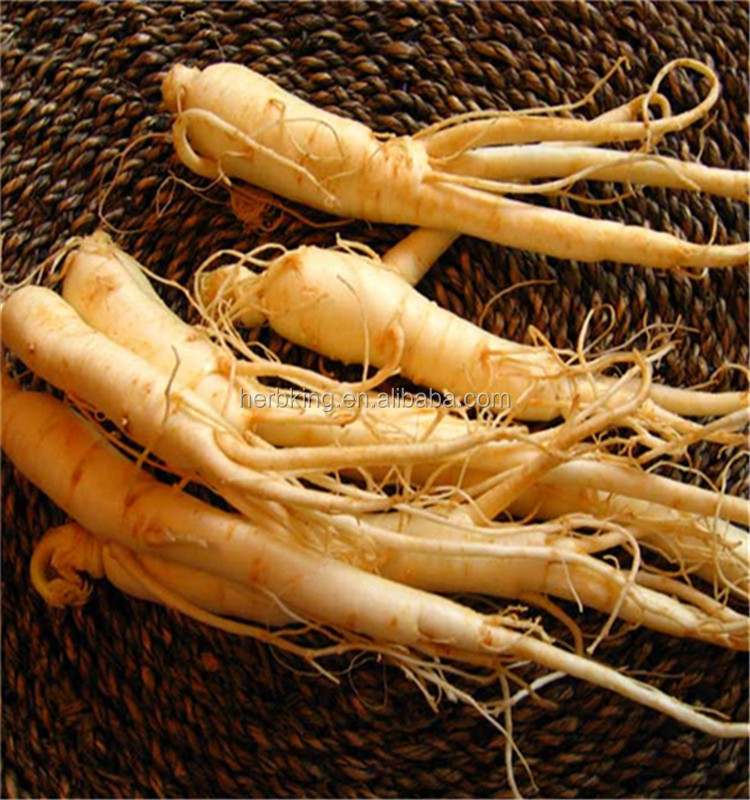 20(S)-Ginsenoside Rh2,anti-cancer Panax ginseng root extract powder