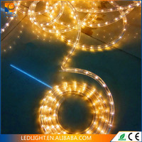 blue color changing led rope light wholesale decorative merry christmas led flex rope light