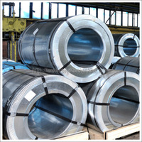 Galvanized steel Coil (Hot-Dipped Zinc, GI)