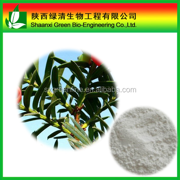 Gold Factory Supply Taxus Baccata Extract 98%