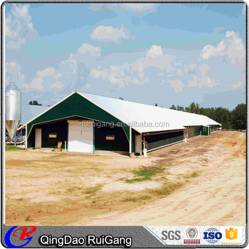 Low cost design poultry house free range chicken shed for Low cost farm house