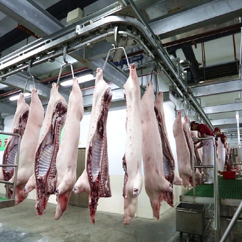 Production Line Slaughter House Abattoir Machinery Pork Equipment Abattoir Process Line Buy Pork Equipment Abattoir Process Line Pork Equipment