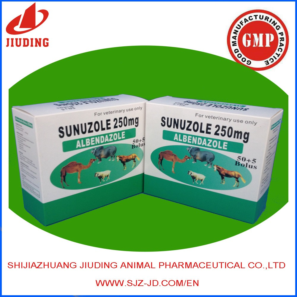 Anthelmintic drugs albendazole 250mg tablet