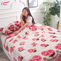 High Quality Low Price Wholesale Multi Purpose 100% Polyester Mexican Thick Blanket For Winter