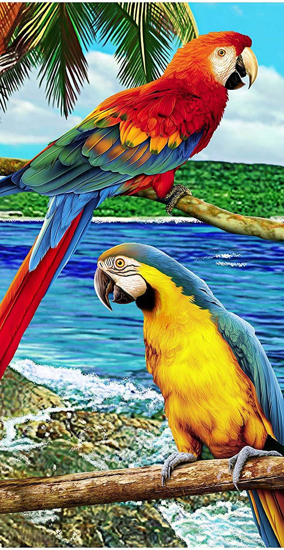 Jungle Macaw Parrot Amazon Wonder Cacatoe Beach Towels