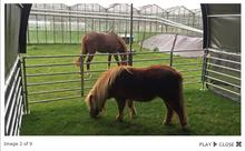 New Product Farm Horse Shelter