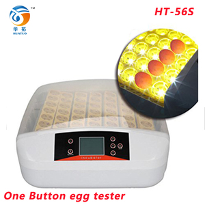 egg incubator price India 50 egg incubator in America HT-56S