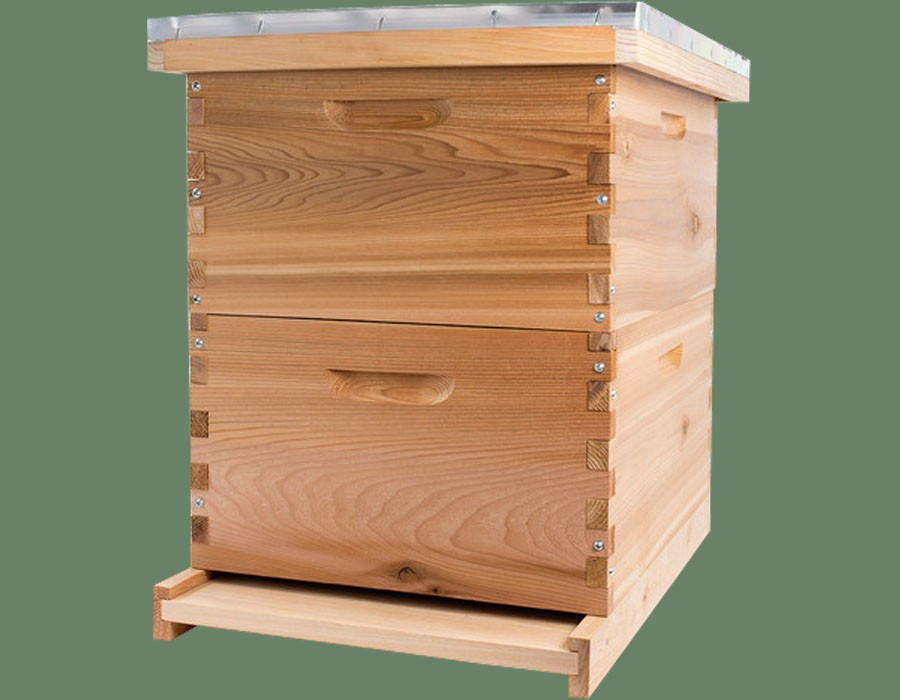 2019 Standard all over the world 10 frame langstroth honey box