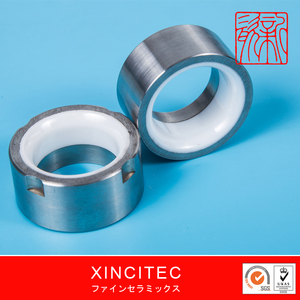 Wear Resistance Metallized Ceramic Parts/XINCI