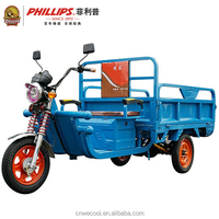 Best cheap Popular 60V 1000W Three Wheel Adult Electric Tricycle for Cargo