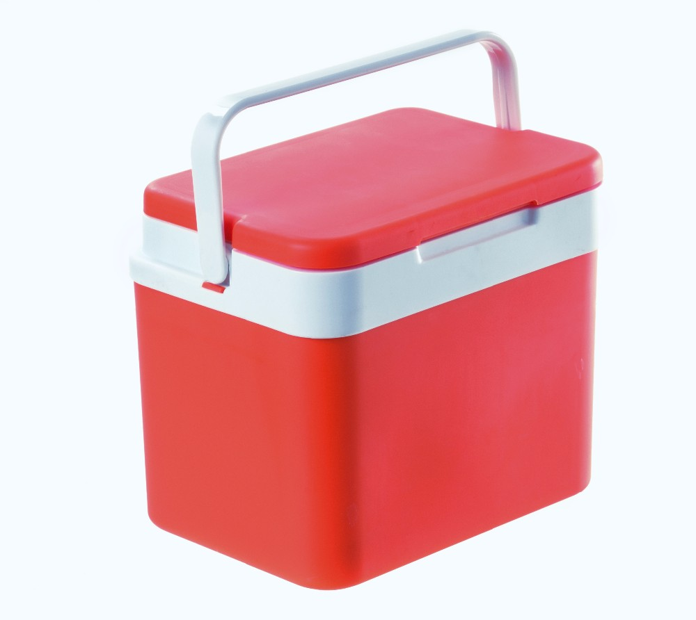 Wholesale 4.7L Outdoor Use Cooler Box for Drink Food Plastic Car Cooler Box