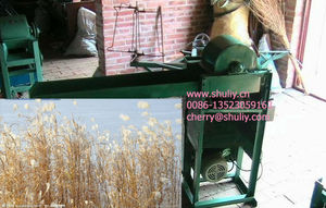 Phragmites / bulrush / reed peeling machine 0086-15238616350
