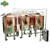 200L 300L 600L 800L 1000L Draft beer making machine with beer bottle machine