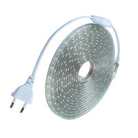Waterproof SMD5050 led tape AC220V flexible led strip 60 leds/Meter outdoor garden lighting with EU plug