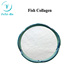 High Purity 99% Fish Collagen Powder Anti-aging Cosmetics Grade In Stock