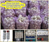 Garlic Farming In China-- High Quality & Low Price