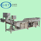 Hot sales fruit and vegetable cleaner fruit washing and sorting machine sand fruit washing machine