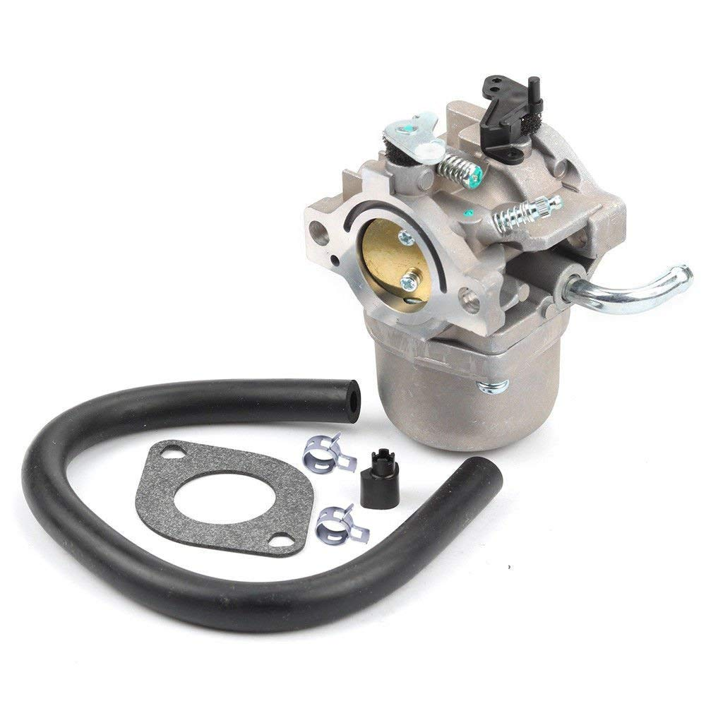 Annpee 590399 Carburetor Carb for Briggs & Stratton 796077 Lawn Mower Engine with Gasket Fuel Line