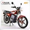 tailg steel electric chopper EEC motorcycle / electric road bike for sale TL1500DQ-EC for sales