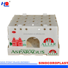 Red Durable Collapsible Plastic Food Box