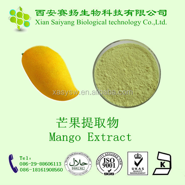 GMP factory professionally suppy African Mango Powder /instant mango powder drink