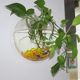 New Product Ideas 2018 Round Clear Fish Tank Wedding Centerpiece Wall Bowls Vases Acrylic Cylinder Vase