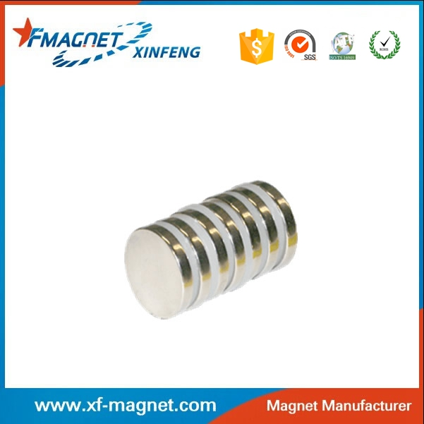 N45 Axially Magnetized Neodymium Magnet India