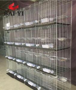 Trade Assurance Anping Baiyi Supply 2m 3 Tiers Racing Pigeon Loft with Full Accessories