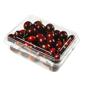 Food Grade Disposable Plastic Clamshell Fruit Container PET Blister Clear Fruit Packaging Box