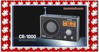 Tecsun Refinement fm radio receiver mp3 player with fm radio