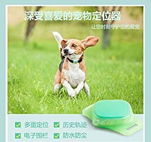 Pet GPS positioning tracker dog dog anti - lost petite micro - pet locator